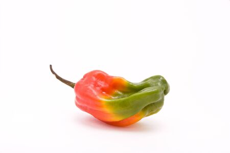 rasta colors: Scotch Bonnet chilli in the colours of the Jamaican flag from low viewpoint against white background.