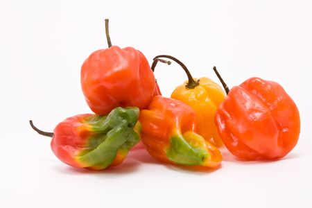 rasta colors: Mixed Caribbean scotch bonnet Chillies against white background from low viewpoint.