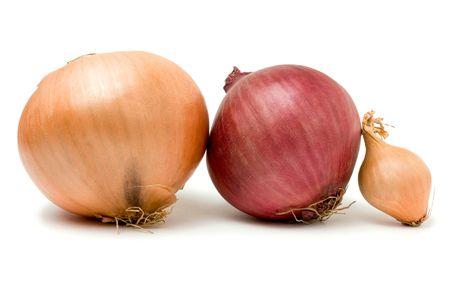 zwiebeln: Eine Auswahl von drei Zwiebeln der Zwiebel-Familie, die vor wei�em hintergrund isoliert.  Lizenzfreie Bilder