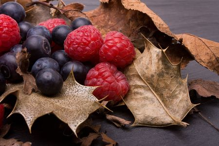 mixed berries: Forest fruits of raspberry and blueberry nestling amongst dried holly leafs.