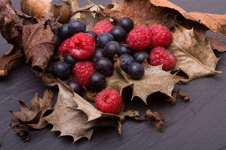 Frutos de bosque de frambuesas y arándanos enclavado entre acebo seca veraniegos.