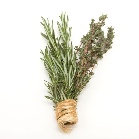medicinal herb: Bunches of Rosemary and Thyme bound with string against white background.