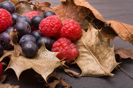 amongst: Forest fruits of raspberry and blueberry nestling amongst dried holly leafs.
