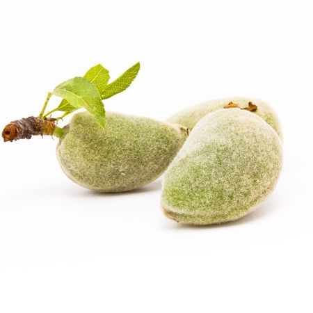 velvety: Green Almonds also known as Bitter Almonds isolated against white background.