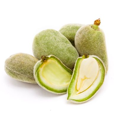 Green Almonds also known as Bitter Almonds isolated against white background.