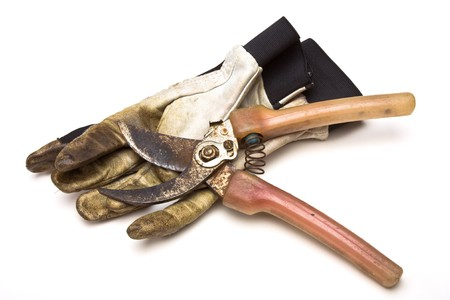 Pair of grubby gardening gloves & shears from low perspective isolated against white background. photo