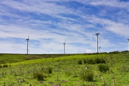 eyesore: Wind farm set in the rolling hills of Fala Moor, Midlothian, Scotland.