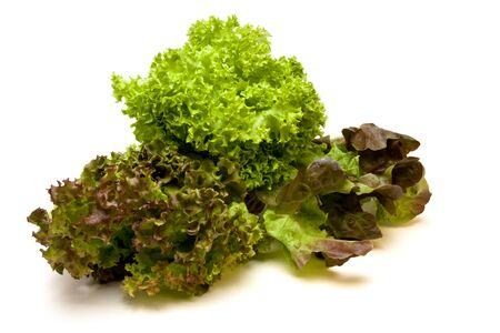 known: Vibrant Three headed Lettuce known as gourmet medley consisting of lollo rosso, red oak leaf and Lollo Biondi varieties. Stock Photo