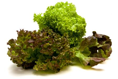 medley: Vibrant Three headed Lettuce known as gourmet medley consisting of lollo rosso, red oak leaf and Lollo Biondi varieties. Stock Photo