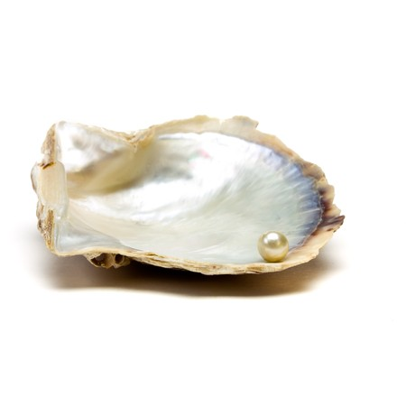 oyster shell: Pearl resting on open oyster shell to depict wealth concept isolated against white.