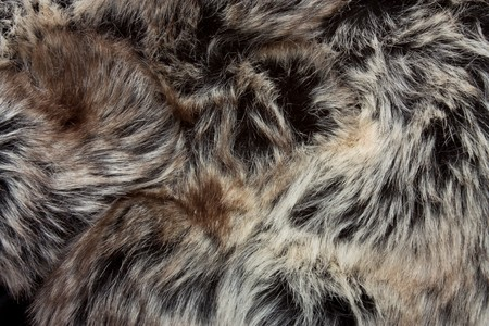Background or texture image of close up of fur.