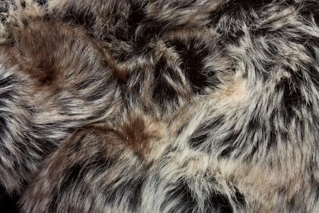 Image de fond ou de la texture de close up de la fourrure.