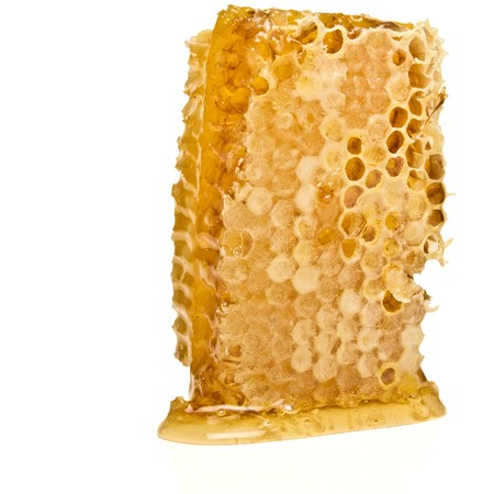 Natural Honeycomb from low perspective isolated on white. photo