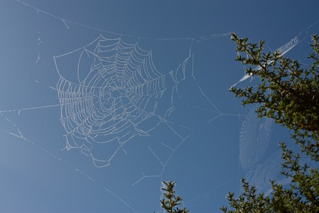 Abstract dew covered cobweb isolated against vivid blue sky. photo