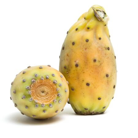 Prickly Pear from low perspective isolated on white background. photo