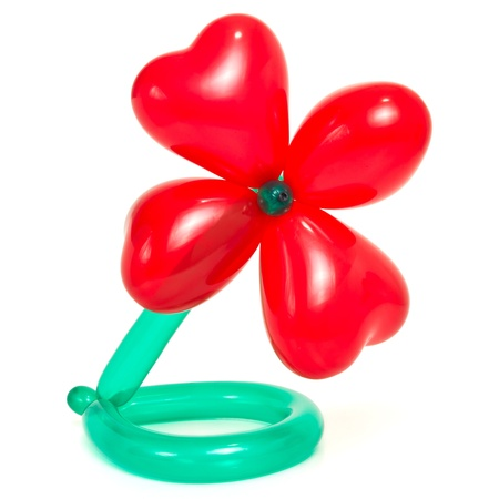 Flower made from vibrant twisted balloons isolated on white background. photo