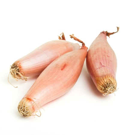 shallot: banana shallot from low perspective isolated on white. Stock Photo