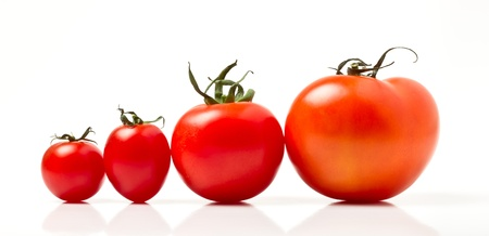 medium close up: Tomato line up of four different varieties isolated on white.