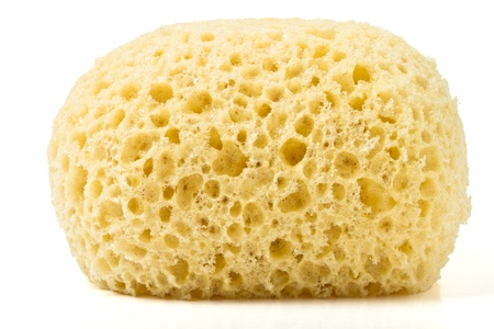 Synthetic bath sponge from low perspective isolated on white.