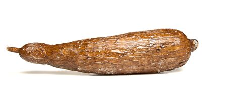 starchy food: Casava root isolated on white from low perpective.