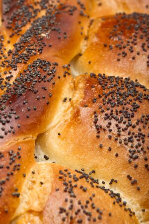 Close up of crusty rustic poppy seeded bread loaf. Stock Photo - 9495368