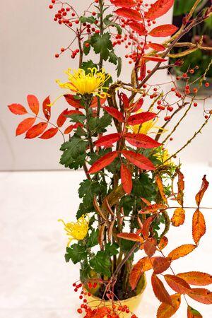 Beautiful Ikebana Japanese art of flower arrangement on white background