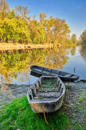 Special Nature Reserve Koviljsko Petrovaradinski Rit (Kovilj – Petrovaradin marshes) complex of marshes and forest ecosystems on the Danube river in Backa region of Vojvodina in northern Serbia