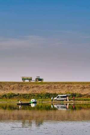 Kovilj, Vojvodina / Serbia - October 20, 2019: Rural scene from the Special Nature Reserve Koviljsko Petrovaradinski Rit (Kovilj – Petrovaradin marshes), in Backa region of Vojvodina, northern Serbia