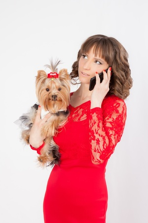 portrait of a young beautiful woman with a yorkshire terrier in her arms in a photo studio talking on the phone