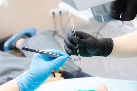 the dentists assistant hands the gutta perchu to the dentist in tweezers. Sterility of instruments and materials in dentistry Фото со стока