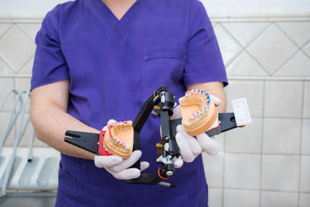 model of the jaw in the articulator in the hand of a young doctor. The dentist shows the unfolded articulator