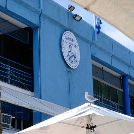 Sidney fish market logo on the blue wall. Worlds second largest fish market after Tokyo. Tasty and healthy food.