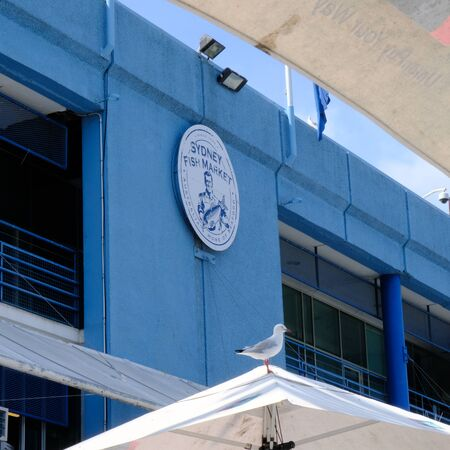 Sidney fish market logo on the blue wall. World's second largest fish market after Tokyo. Tasty and healthy food. 版權商用圖片 - 137907290