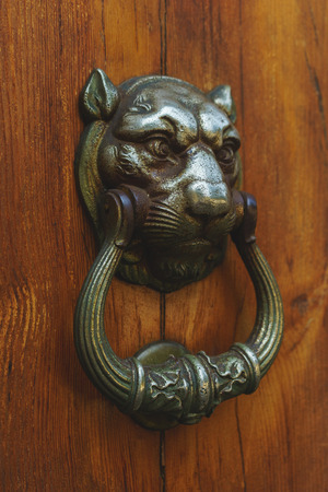knock on door: Old wooden door and metal decoration in the form of a lions head to knock. Closeup of decorations on the wooden door in the form of a lions head.