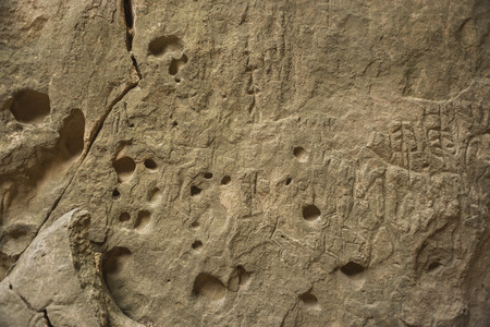 prehistorical: Detail of a stone wall in a cave with ancient rock art petroglyphs in Gobustan National Park. Prehistorical petroglyphs in Qobustan.