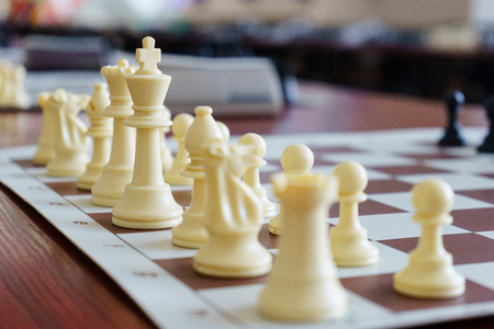 Placed on the game board chess pieces. White chess pieces on the starting position, ready for a game of rapid chess. Soft focus and beautiful bokeh. Stock Photo