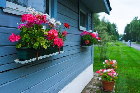 Small rustic wooden house blue board potted flowers garden outdoor recreation. Small household house in the garden. Flowers and nature. Soft focus.