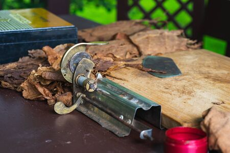Process of making traditional cigars from tobacco leaves with hands using a mechanical device and press. Leaves of tobacco for making cigars. Close-up, soft focus and beautiful bokeh. Stockfoto