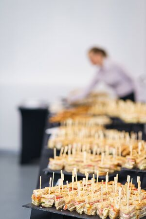 Quick snacks, canapes, mini sandwiches with ham, tuna, vegetables and cheese. Triangular bread on a rack for guests and participants of the event. Catering, event services. Service