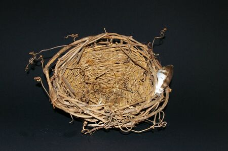 Small rustic woven basket with a rim of vine tendrils resembling an empty nest with a birds feather  Stock Photo
