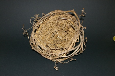 Small empty birds nest surrounded by vine tendrils isolated on a black background. photo