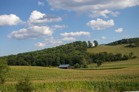 forested: Looking across rolling green farmland to a small barn nestled under a forested hill