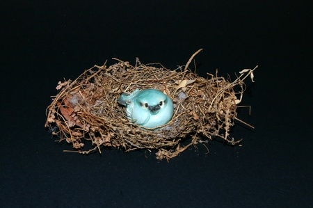 Small figurine of a baby bluebird sitting in a nest facing the camera on a dark background Editorial