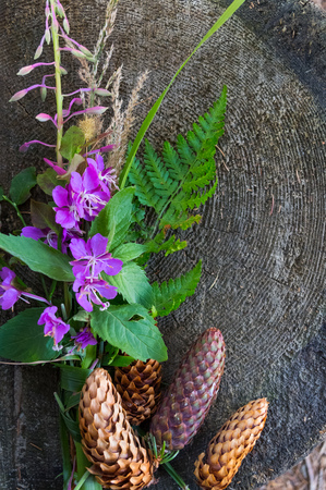 Purple flowers on wooden boards with space for text