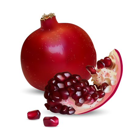 Vector illustration of a realistic pomegranate, whole and slice with individual grains Ilustração