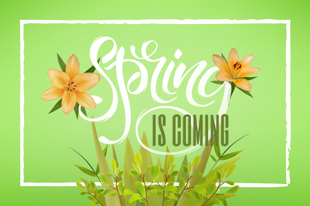 Lettering of brush Spring is coming you can use in yuor disign, print posters, cards and promotional items. Flower Background and Spring is coming Lettering Illustration