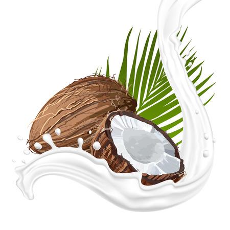 Coconut with milk splash. Fruit and yogurt. Natural fruit.