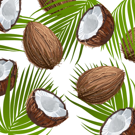 Coconut with leaf. Natural fruit. Ornament of coconut fruits and palm leaves