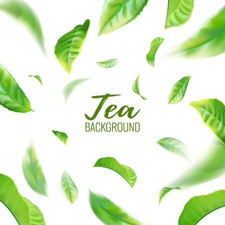 Realistic green tea leaves background for advertising poster. Vector illustration