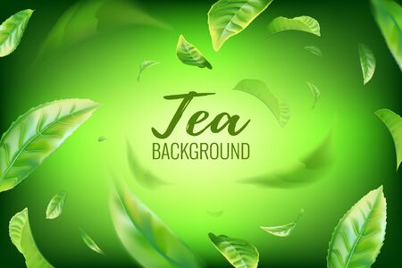 Realistic green tea leaves background for advertising poster. Vector illustration Imagens - 128524522